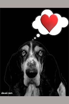 St Dwynwen's day or Valentine's Day E-card